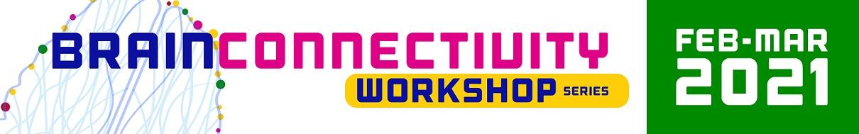 BRAIN Connectivity Workshop Series
